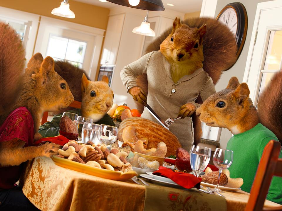 Squirrely Thanksgiving