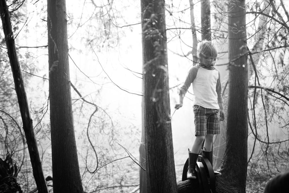 boys-branches-16.jpg