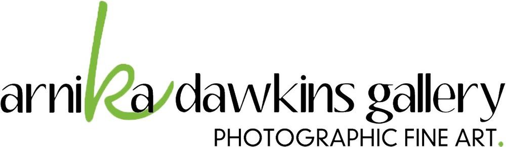 Sponsored by Arnika Dawkins Gallery