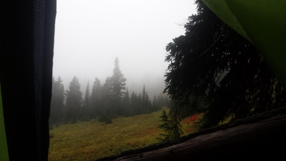 View from my tent vestibule