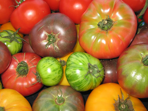 heirloom-tomato.jpg