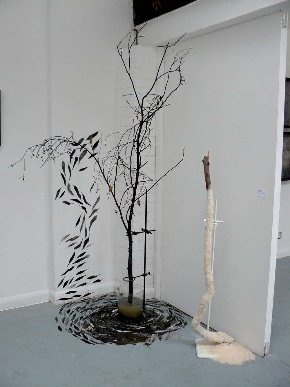 installation view, Landscape of Change exhibition 2011