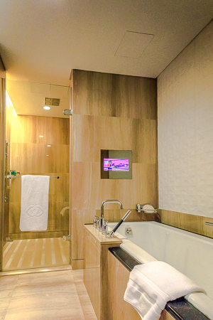 Deep soaking bath and shower room