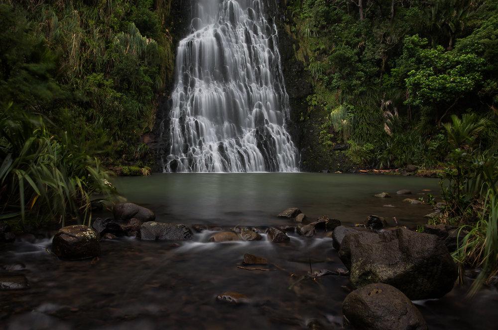 Webpage_NZ-21.jpg