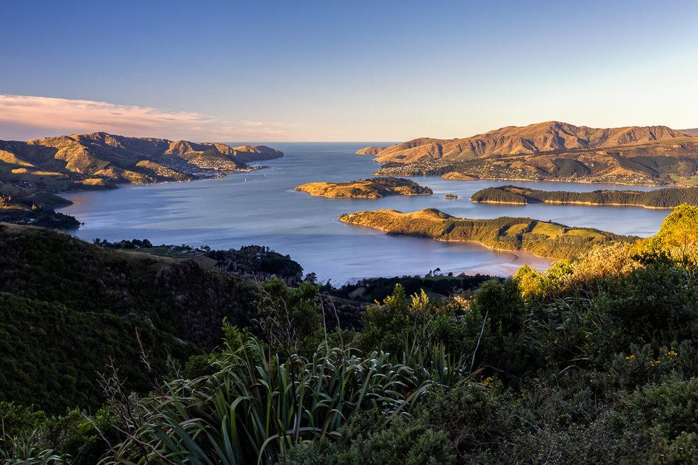 Webpage_NZ-39.jpg