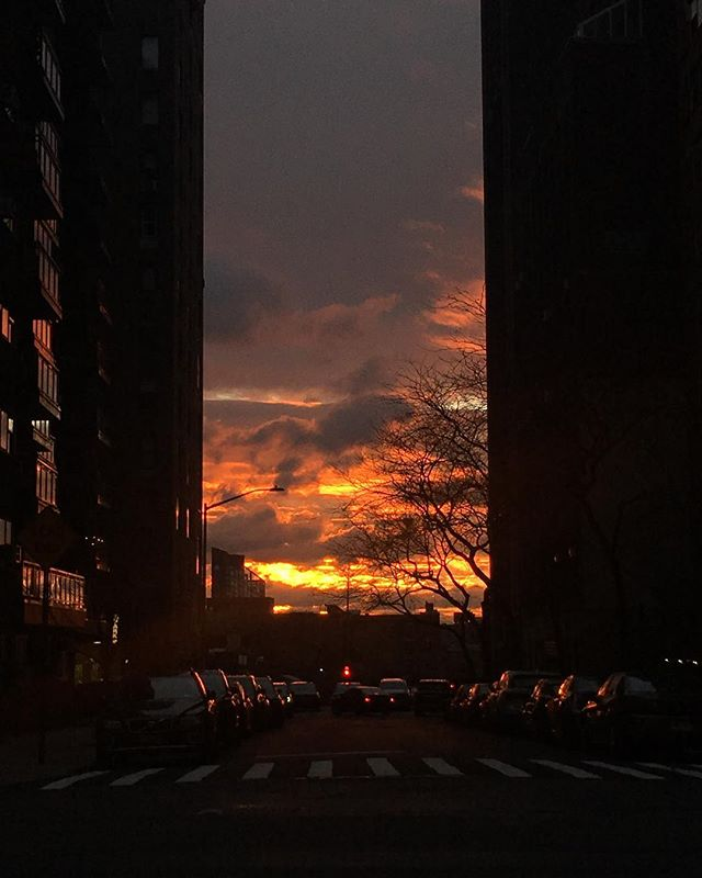 This morning's sunrise was a showstopper! It took me an extra 15 minutes to walk to practice because I was stopping in every intersection to take photos and stare. It was mesmerizing! A photo can never truly capture to whole picture or the total beauty but here's my attempt. . . . #sunrise #nyc #nycsunrise #uppereastside #paintinginthesky #beauty #stopandlookatthebeautyaroundyou #magnificent #cityscape