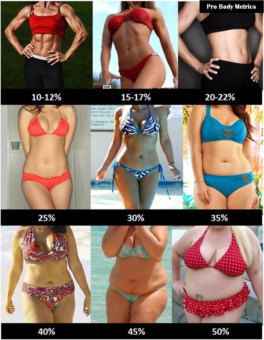 Women Fat.jpg