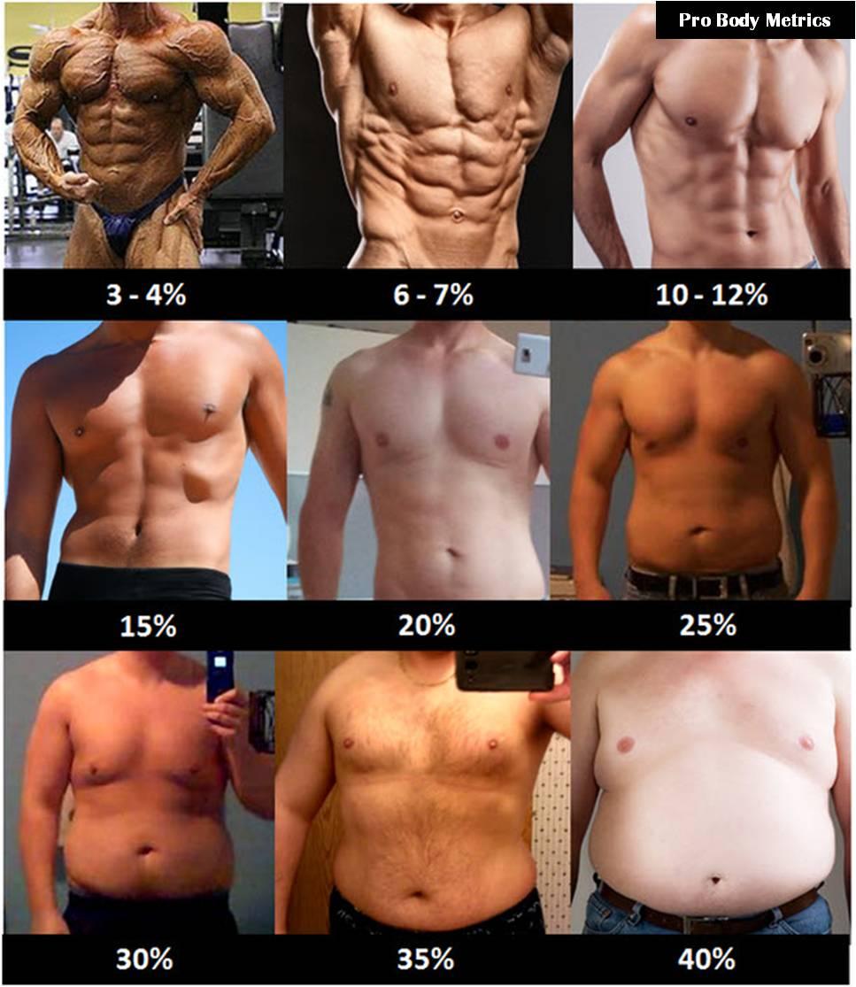 Men Fat.jpg