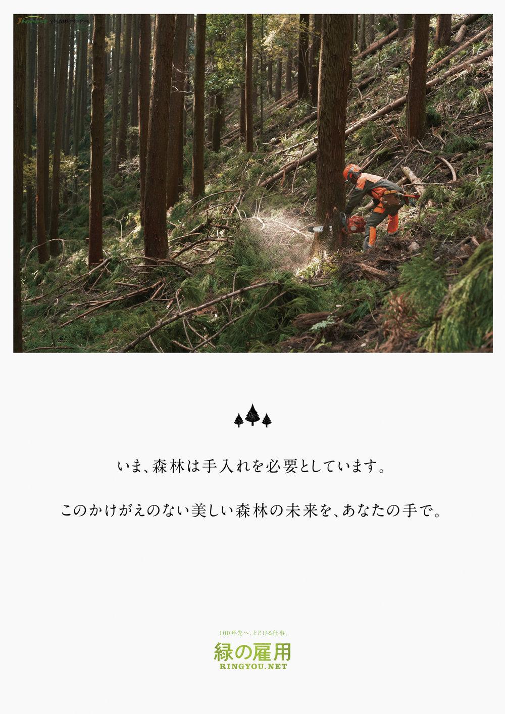 MIDORI_B1-09.jpg