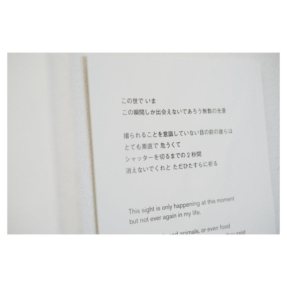 aaaaa-09.jpg