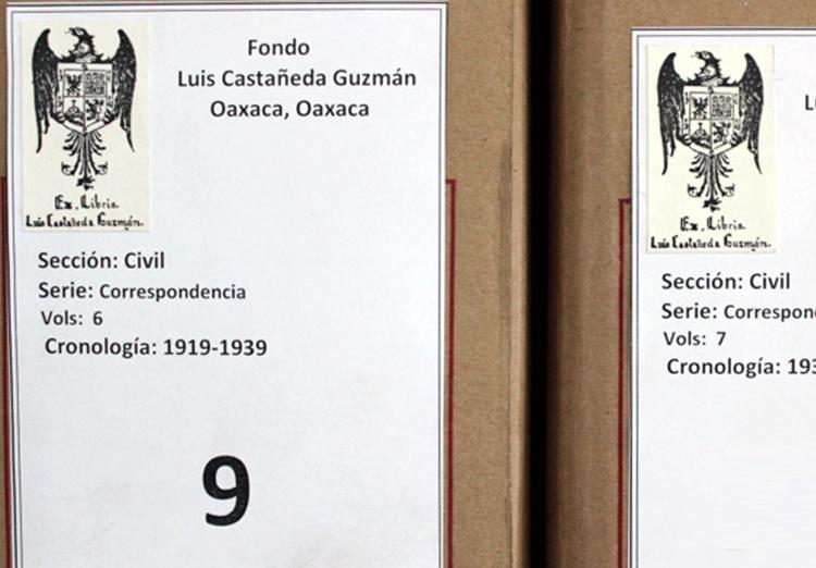 Colección Castañeda Guzmán