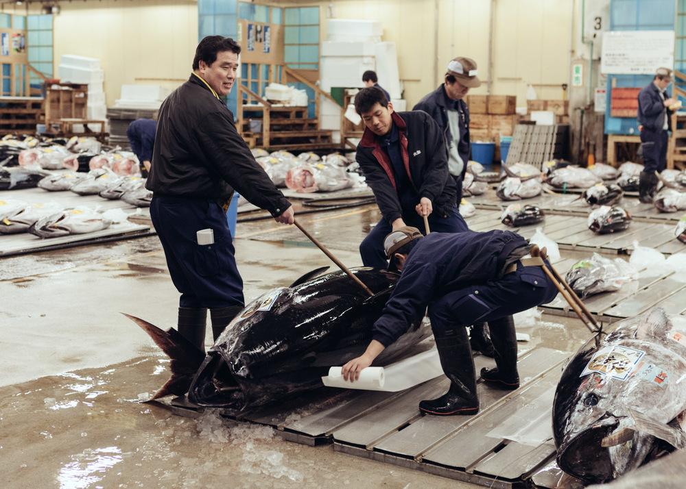 Tsukiji_0004.jpg