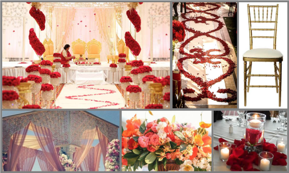 Images ripped from Patty & Shinz' Pinterest page guided us in designing a proposal of bright colors and rich tones.