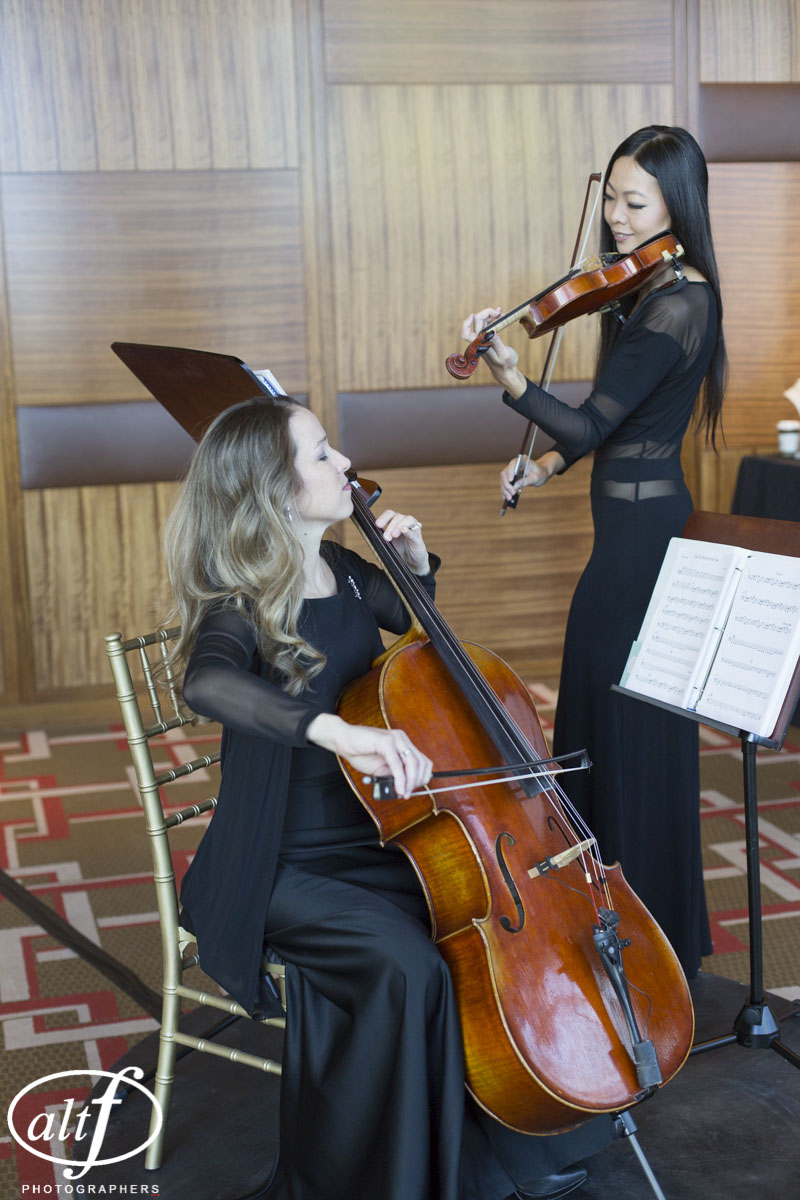 Strings Trio on Rotating Stage
