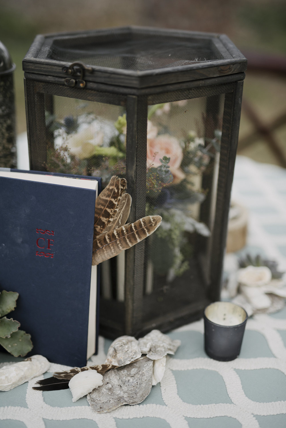 Woodsy, romantic   little   vignettes filled with good books, beautiful feathers, and the perfect lantern styling. Photo by Carla Ten Eyck.
