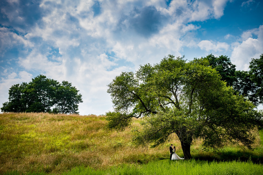 Sweeping landscape wedding portrait.  Brian Friedman of B Freed Wedding Photography.
