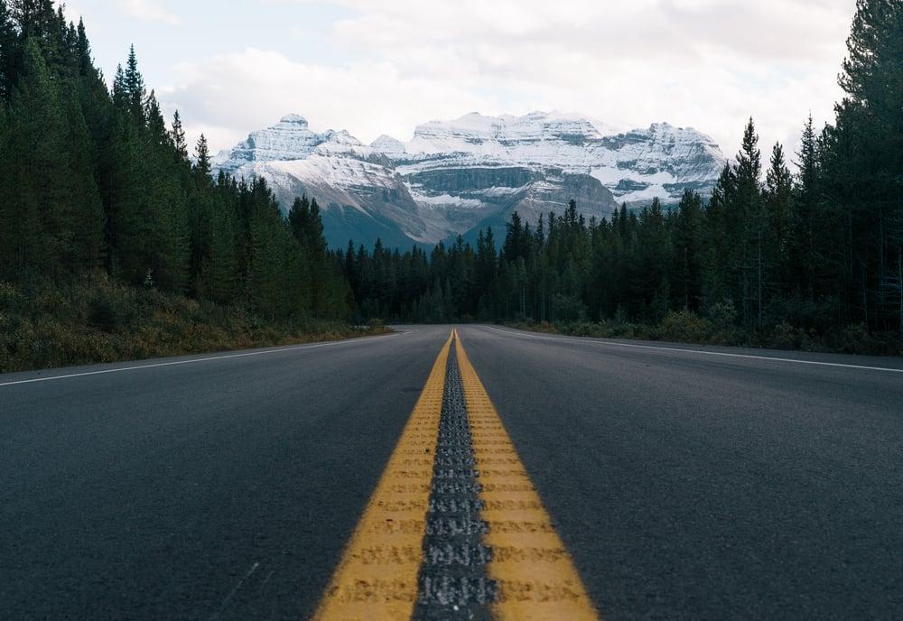 long road alberta2.jpg
