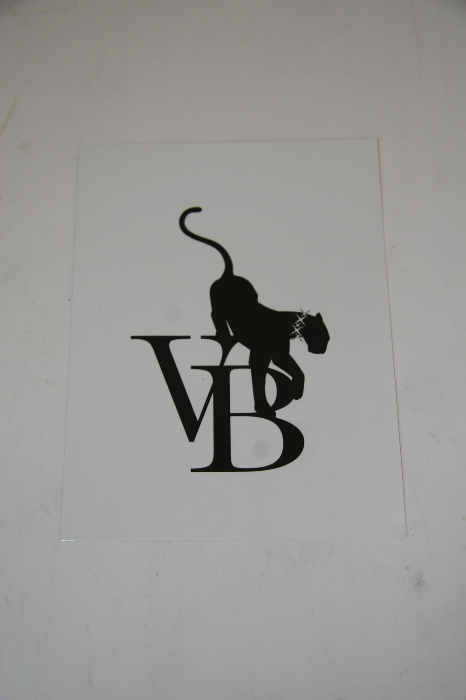 pro-vb005.JPG