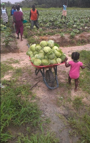 Photo Courtesy of SEED Program International
