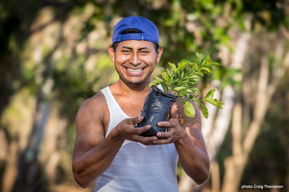 Luis shows off a  lime tree seedling in  his demonstration  garden.  [photo: Craig  Thompson]