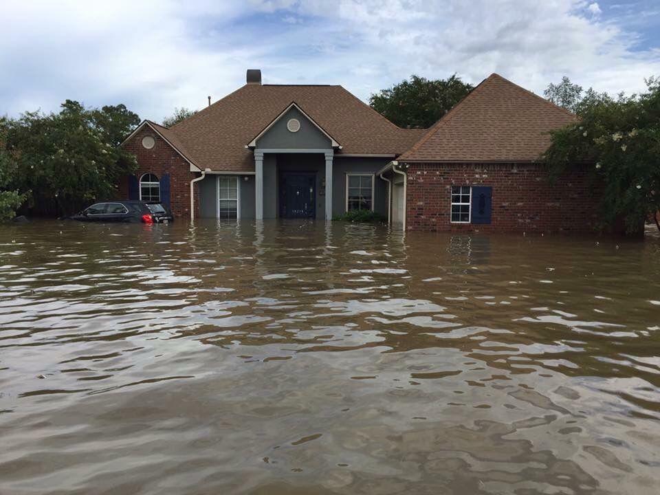 Flood (2).jpg