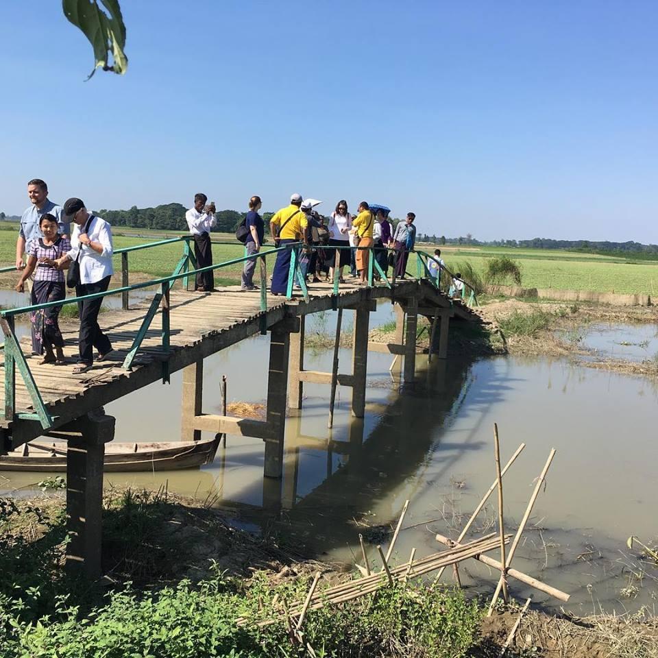 woc bridge (2).jpg
