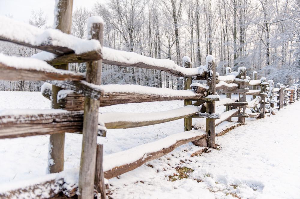 Winter_002.jpg