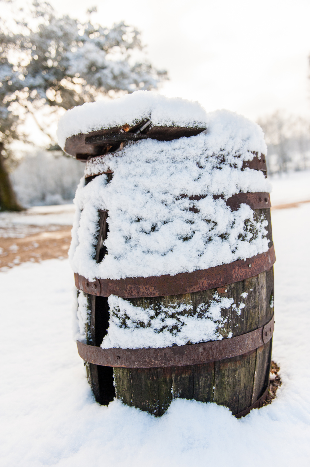 Winter_006.jpg