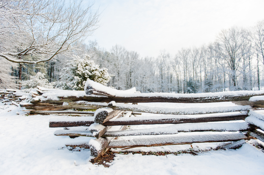 Winter_003.jpg