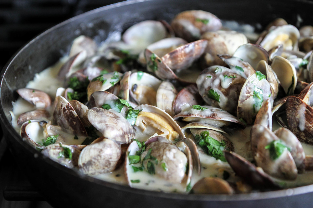 Fresh Clams in Creamy White Sauce