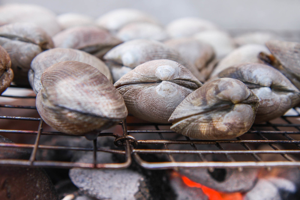 Clams cookingover charcoal.
