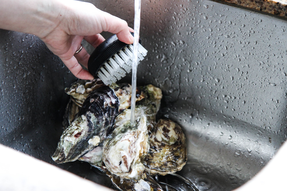Scrub oysters thoroughly before shucking