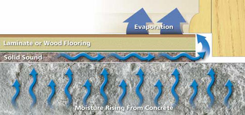 Why Do I Need A Moisture Barrier For My Floors Installyourfloorscom - Laying vapor barrier for laminate flooring