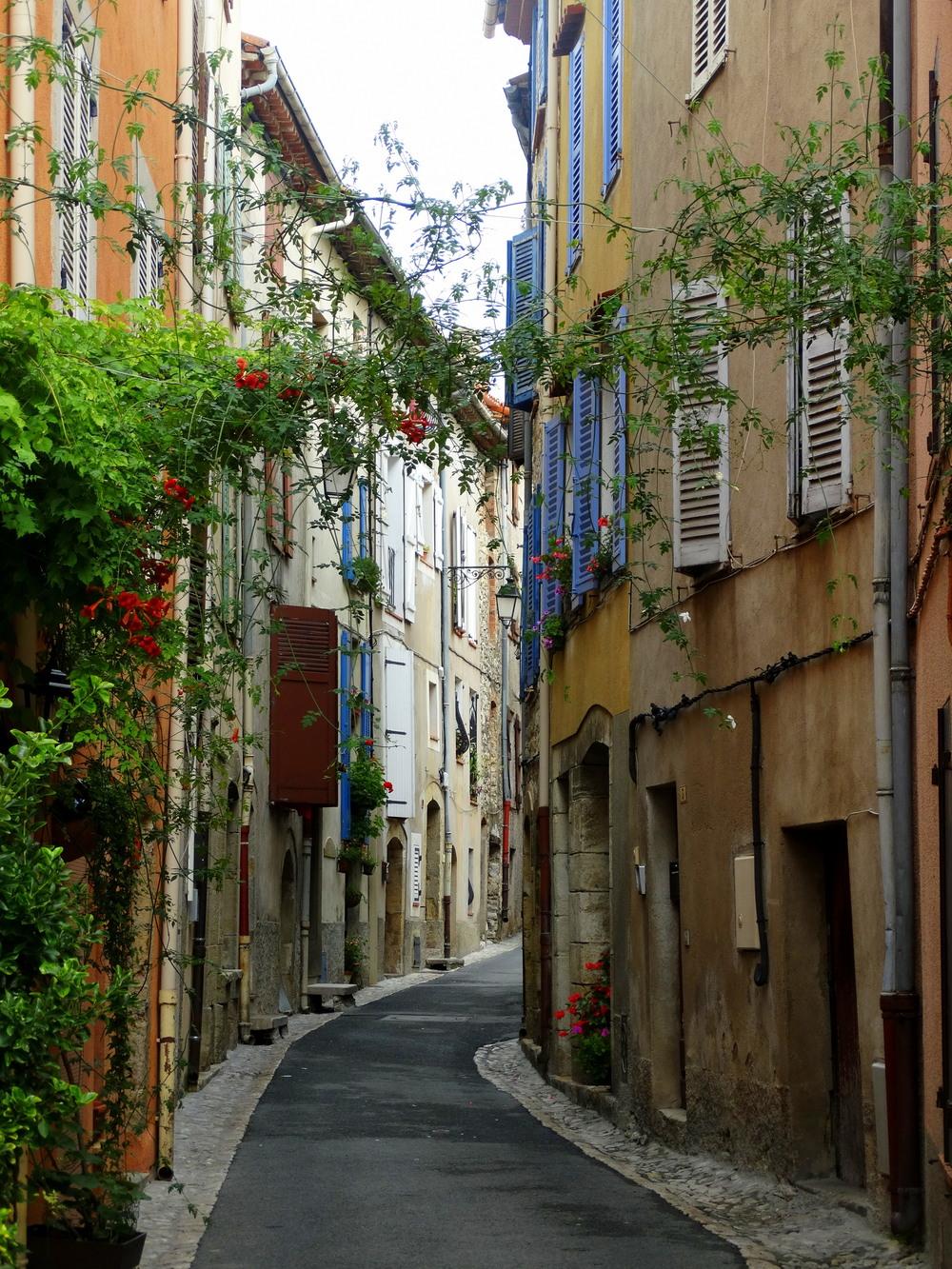 Montauroux street