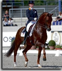 Jazz_kwpn_dressage.jpg