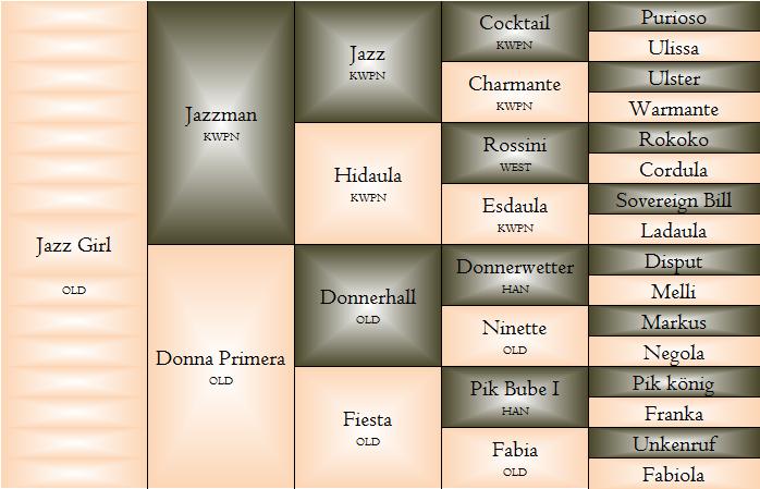 jazzi.png