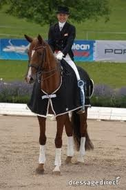 Danska mästaren och Grand Prix stoet Donna Ansana e. Blue Hors Don Schufro