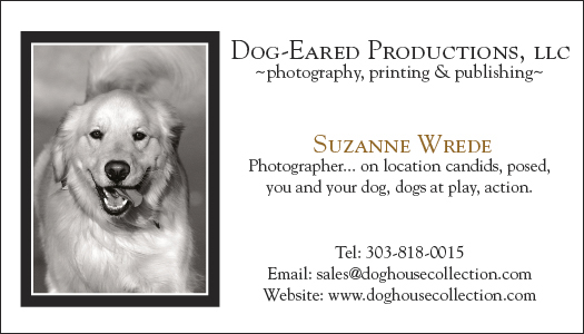 DogEared_Business_Card72_28.jpg
