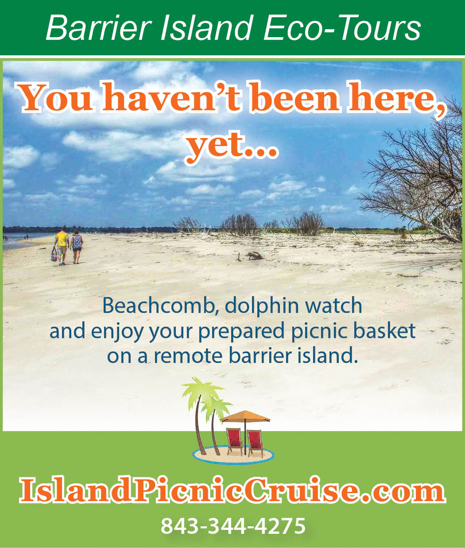 Island Picnic ad - Best Vaca Ever F.jpg