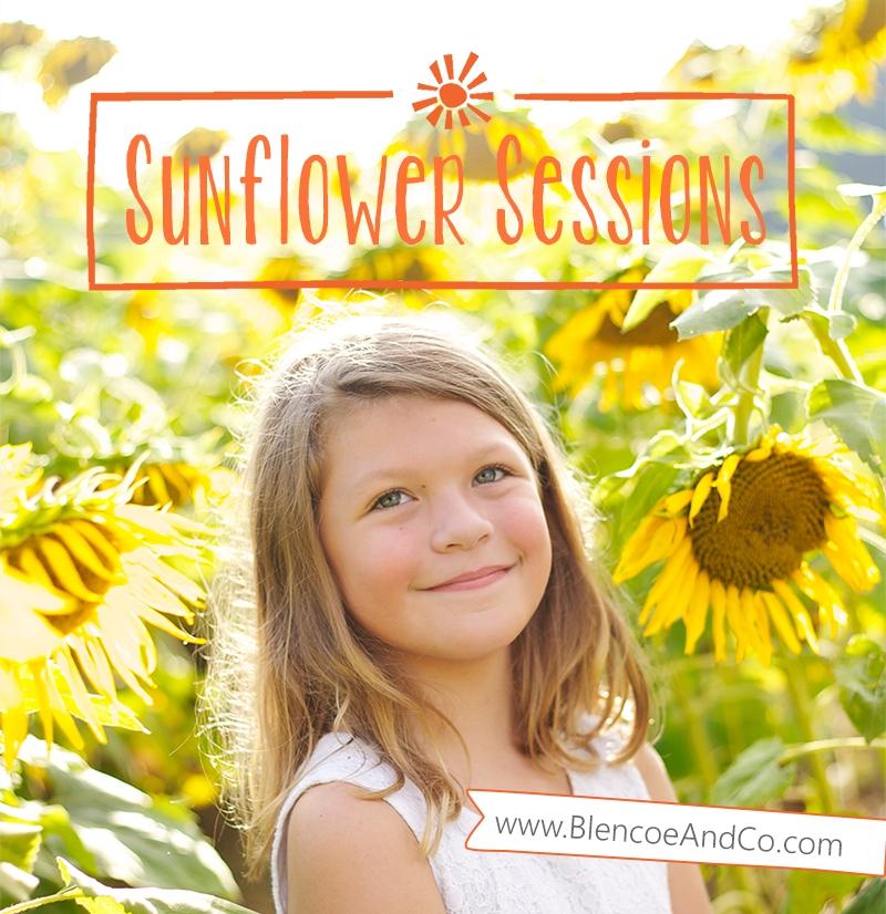 sunflowers_main.jpg