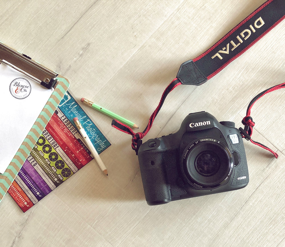 Camera_Layflat_IMG_1955_SMALL.jpg
