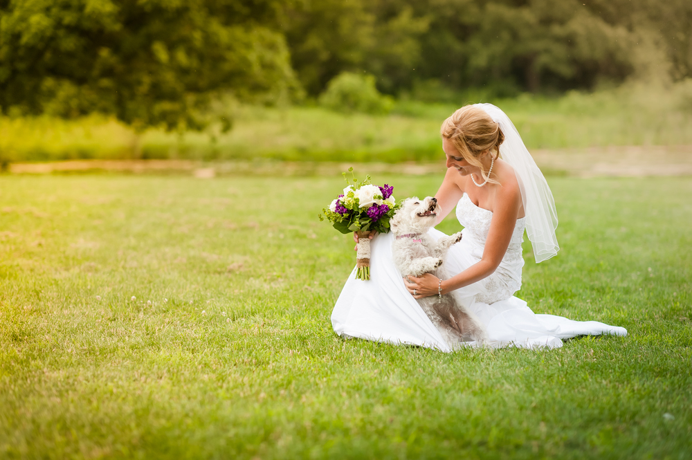 bride with her dog on wedding day in st.charles