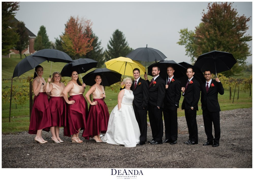 wedding party under umbrellas at acquaviva winery in maple park
