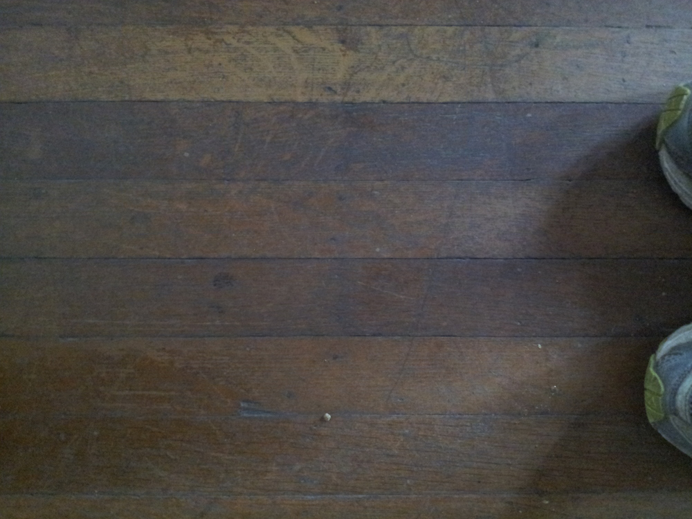 Elizabeth Burns Design | Old Wood Floors in Myrtle House