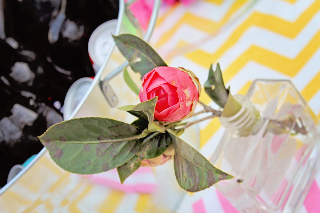 Elizabeth Burns Design | Budget Friendly Wedding Shower Ideas - Biscuit Themed Couples Wedding Shower