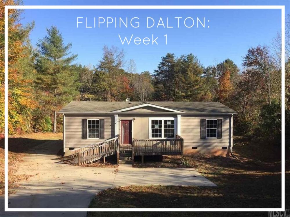 Elizabeth Burns Design | Adventures in House Flipping - Dalton House Week 1