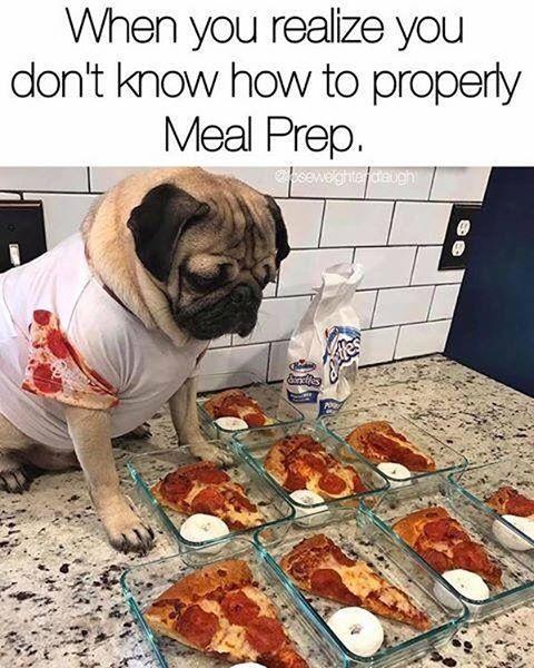 Weekend Meal prep! #dougthepug