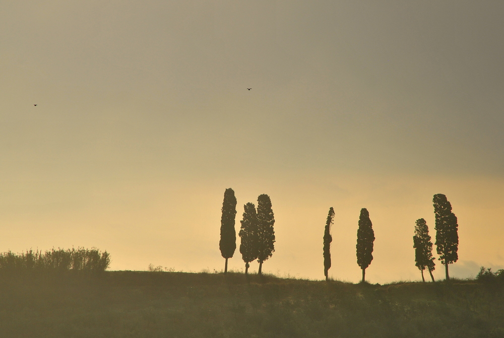 Vinci, Tuscany