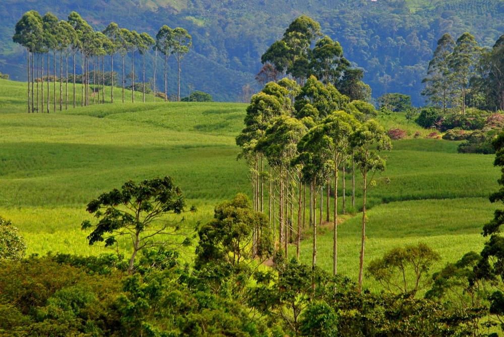 Central Costa Rica