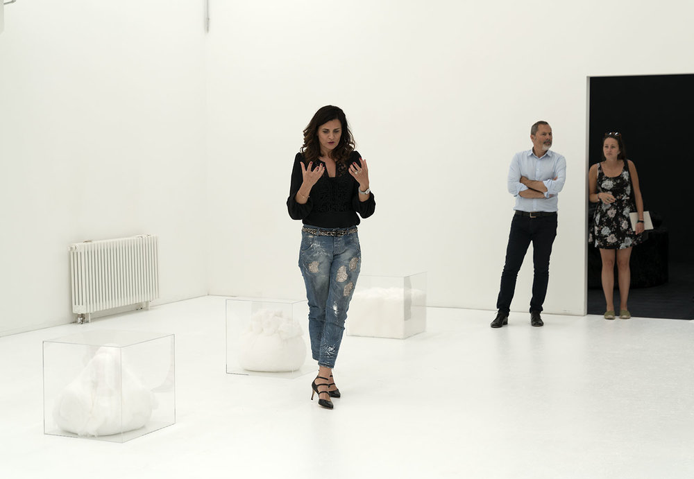 curator Sabine Gamper